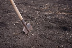 Things To Do Before Starting To Dig