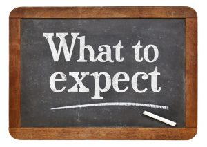 What to expect surveying companies services